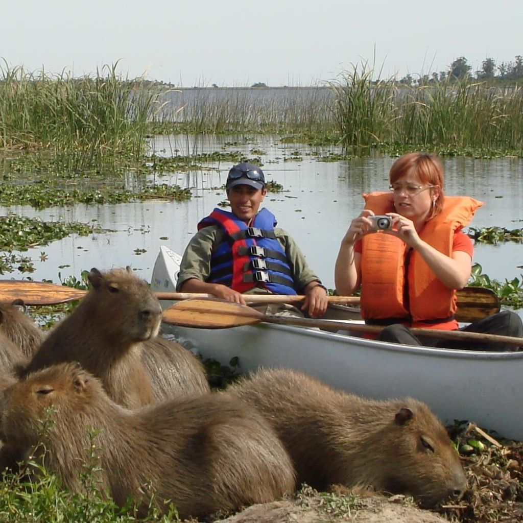 canoe safari (3)